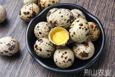 精品鹌鹑蛋