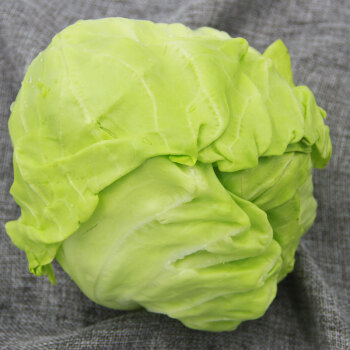 绿鲜知 圆白菜 包菜 卷心菜 绿甘蓝