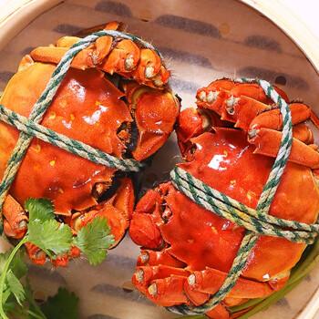 六月黄大闸蟹