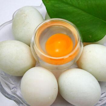 新鲜水鸭蛋