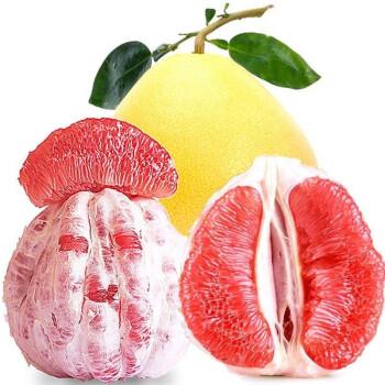 南野田园 福建红心柚子
